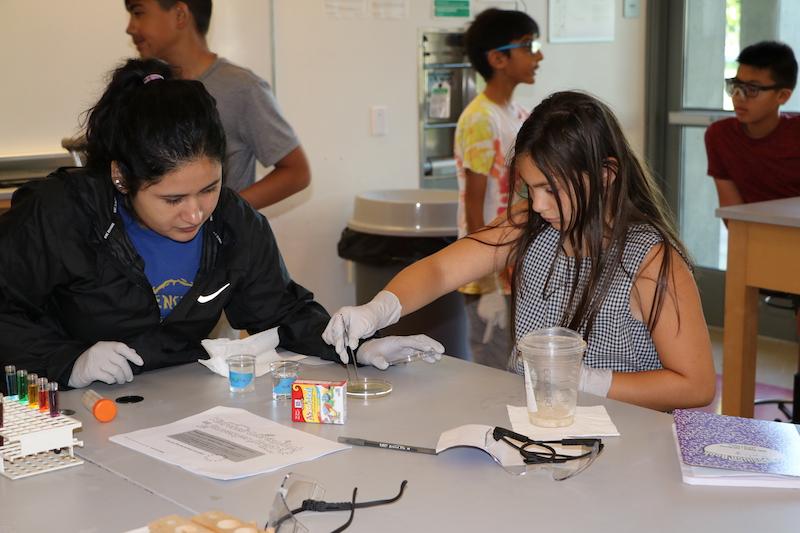 Bobcat Summer STEM Academy
