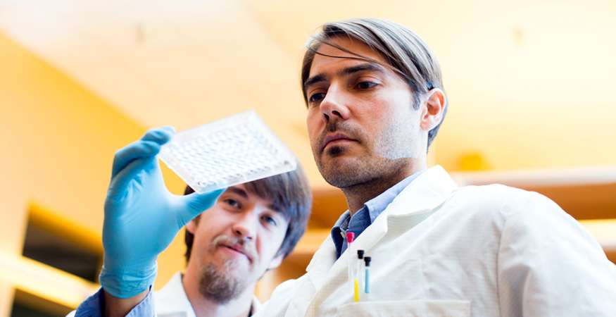 Fabian Filipp, assistant professor, working in lab.