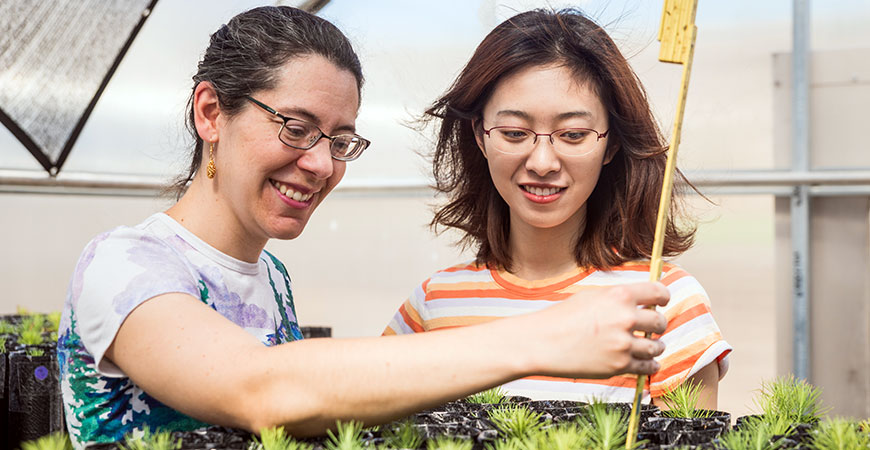 Professor Emily Moran, left, and graduate student Mengjun Shu examine seedlings in the research greenhouse.